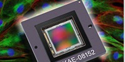 IT-EMCCD image sensors target low-light applications